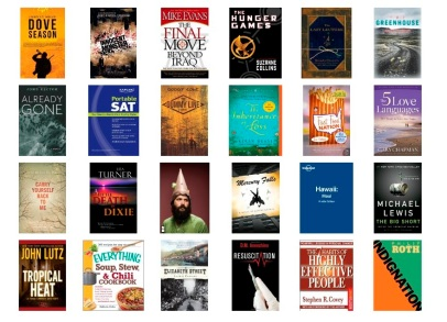 Thousands of books to borrow: Here are just a few of the titles you'll find in the Kindle Owners' Lending Library.